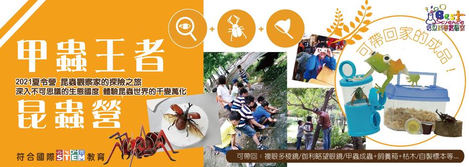 甲蟲王者昆蟲夏令營
