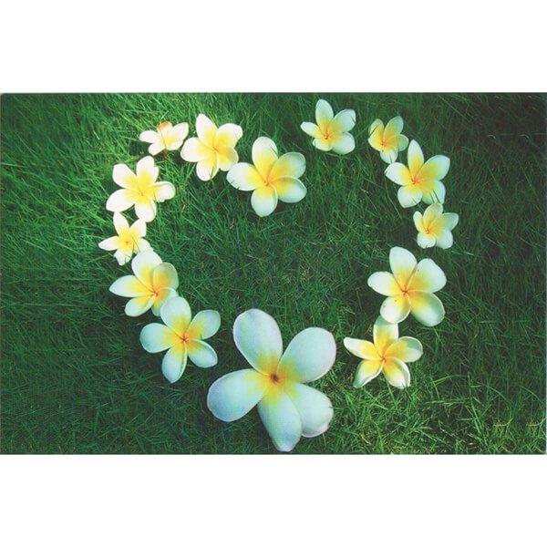 Love Flower 萬用卡片