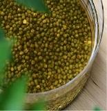 莊淑旂:甘草煮水浸綠豆可把病毒趕體外