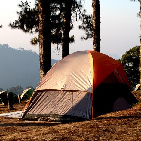 開心露營卻被叮成紅豆冰怎麼辦?