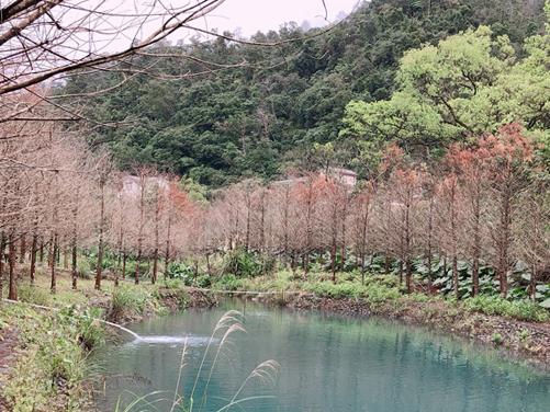 生態環境觀察