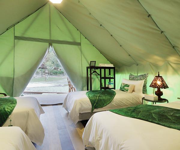 Quad Tent