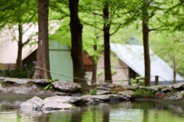 清水那方豪華露營
