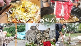 新社谷關兩天一夜小旅行的行程推薦!