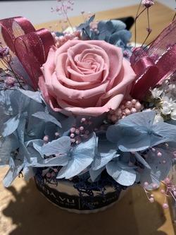 永生花經典小花盆 (藍色、粉色、紅色)