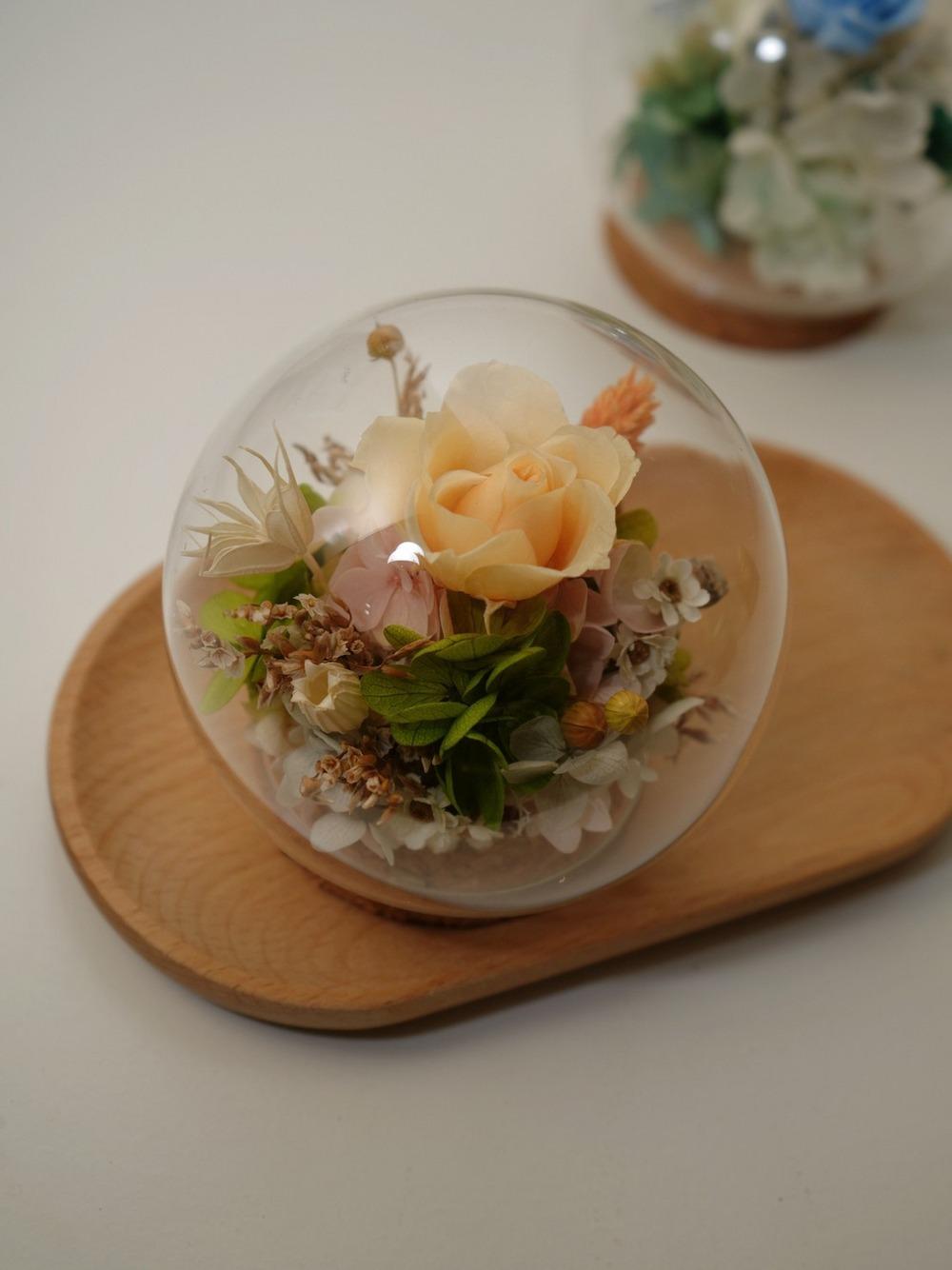 迪士尼公主永生花盅罩-愛麗絲