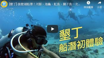[墾丁] 後壁湖船潛!河豚、海龜、魟魚、獅子魚一次看盡興!
