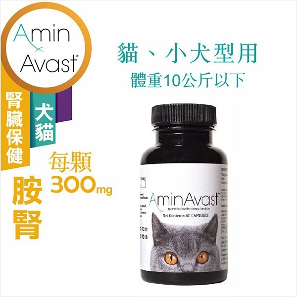 胺腎(貓/小型犬用)300mg 60顆【美國AminAvast】
