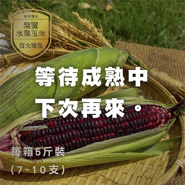 百大青農-紫蜜水果玉米